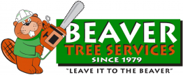Beaver Tree Services