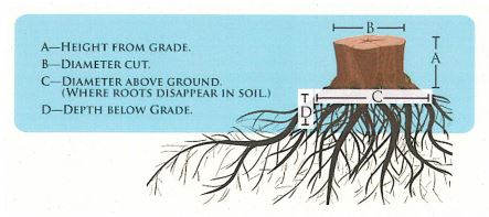 Stump grinding graphic